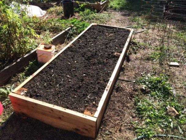 Подготовка грядки для посадки чеснока осенью