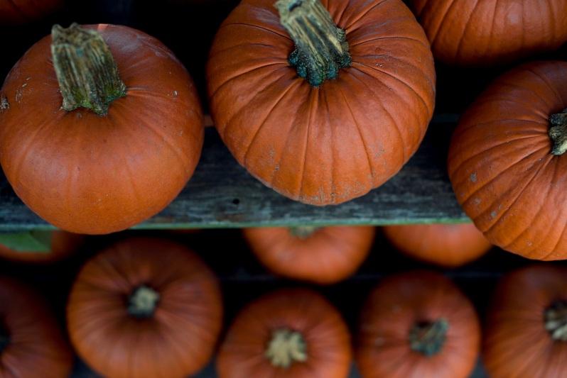 Тыква - прекрасный и полезный овощ. Правильное хранение поможет сохранить полезные свойства на всю зиму.
