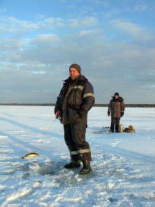 Где и когда ловить судака на тюльку зимой