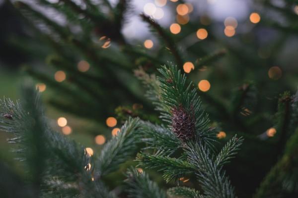 Идеи украшения новогодней елки