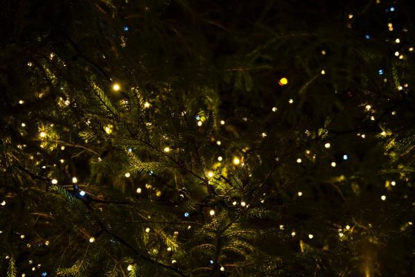 Как правильно наряжать новогоднюю елку поэтапно