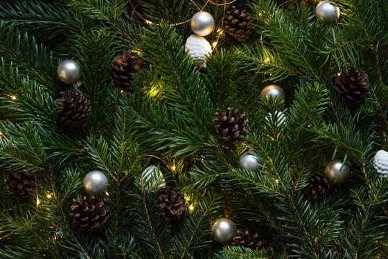 Почему украшают на Новый год именно елку