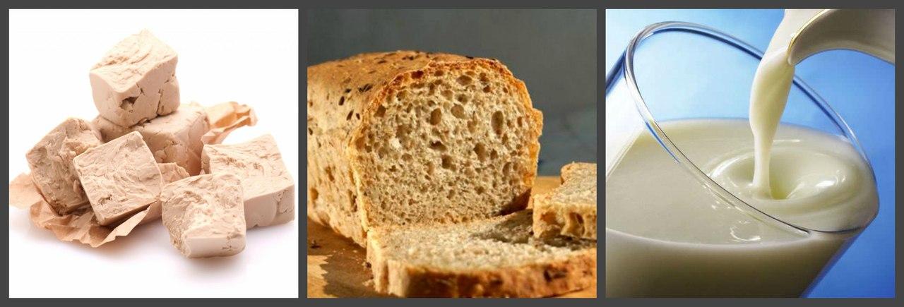 Удобрение дрожжами, хлебом, кислым молоком