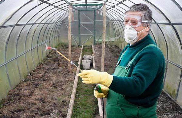 обработка теплицы весной от болезней и вредителей