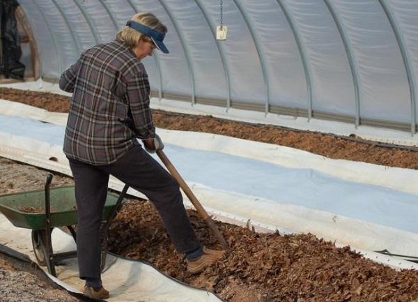 подготовка грунта для теплицы