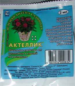 Как бороться с тлей на розах • народные и химические средства