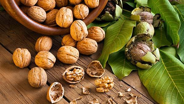 Как правильно высушить грецкие орехи в духовке