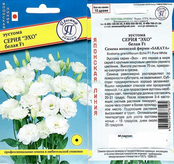 Лизиантус выращивание из семян в домашних условиях